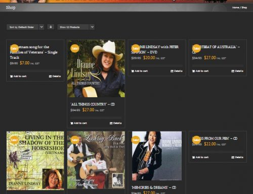 New DIANNELINDSAY.COM Web Site and Online Store