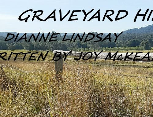 NEW SINGLE FOR DIANNE LINDSAY